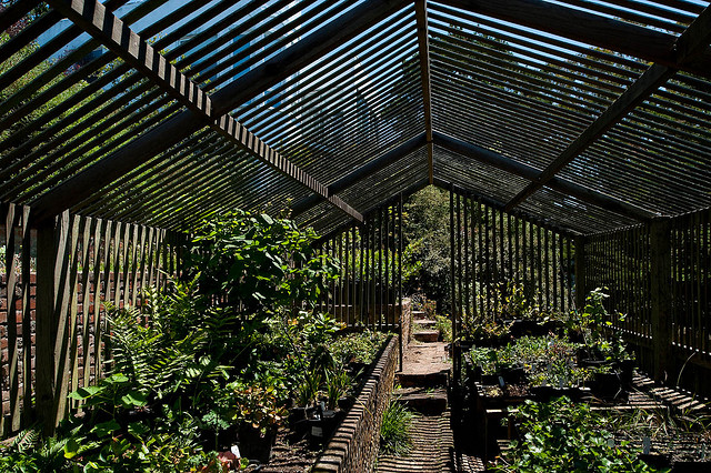 lath greehouse