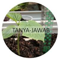 TANYA JAWAB 4